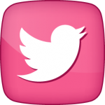 Twitter-1 bird  social  icon active pink white