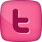 Twitter-1 social icon hover pink