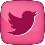 Twitter-2 social icon hover pink